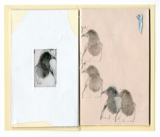 24. Pica Pica (Pamphlet Book), Five for silver, 2010, Mixed media