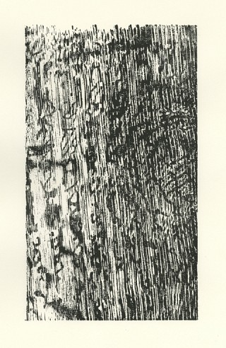 07. Imprint III, 2010, Wood cut, 30 x 22 cm